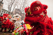 Dragons dance to welcome in the Year of the Dragon.