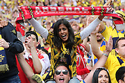 Arsenal fan during the The FA Cup match between Arsenal and Aston Villa at Wembley Stadium, London, England on 30 May 2015. Photo by Phil Duncan.