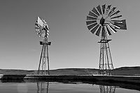 Windmills and a farm reservoir, Northern Cape, South Africa