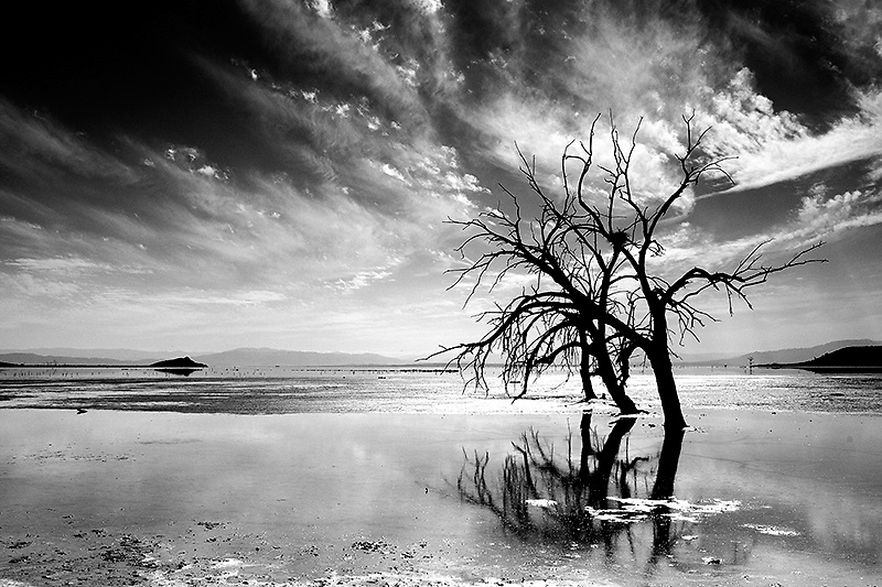 Salton Sea CA