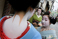 Miehina (in green kimono), a 20 year old maiko ( an apprentice geisha) from the Miyagawacho district of Kyoto talks with fellow maiko girls in the street before their evening appointments. The girl in the foreground displays the traditional 'eriashi' decorative painting of the neck. Kyoto, Japan, Sunday, May 18th 2008.