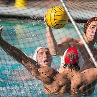USC Men's Water Polo v UC Irvine
