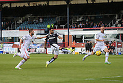Kane Hemmings fires home Dundee's late equaliser - Dundee v Inverness Caledonian Thistle in the Ladbrokes Premiership at Dens Park<br /> <br />  - &copy; David Young - www.davidyoungphoto.co.uk - email: davidyoungphoto@gmail.com
