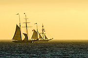 Tall Ships Sailing in Pacific Ocean