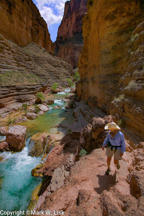 (MR) Hikers and river runners often hike along the cool blue Havasu Creek in Grand Canyon National Park.
