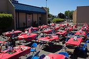 Milpitas High School teachers enjoy a baseball themed Teacher Appreciation Luncheon at Milpitas High School in Milpitas, California, on April 14, 2015. (Stan Olszewski/SOSKIphoto)