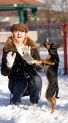 Owner plays with Wallace her four month old mixed breed rescue puppy dog for the first time in the snow while out for a walk in a local park  7 February 2009 © Paul David Drabble
