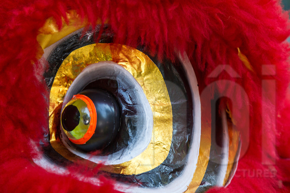 Detail of dragon eye from costume used in Dragon Dance, Ho Chi Minh City, Vietnam, Southeast Asia