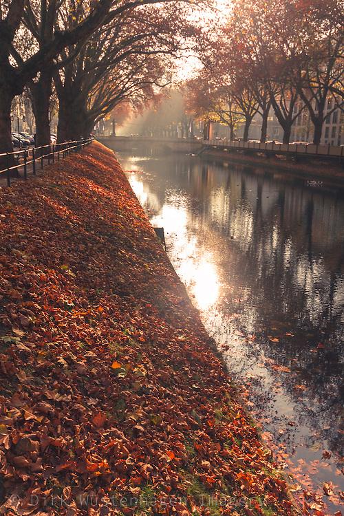 Stadtkanal Königsallee Düsseldorf im Herbst, Düsseldorf, Deutschland