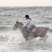 Girl rides her horse through the surf at Cranes Beach, Massachsetts. Plum Island is in the background
