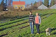 Ahlbergin puutarha Inkoossa toimittaa  luomuyrttejä, versoja, erikoissalaatteja ja syötäviä kukkia pääkaupunkiseudun tukuille ja ravintoloille.
