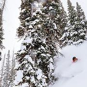 Jim Ryan skis powder in the Teton backcountry.
