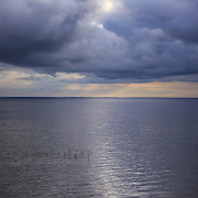 """All that Shimmers""<br />