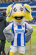 Brighton Mascot ahead of the FA Cup fourth round match between Brighton and Hove Albion and West Bromwich Albion at the American Express Community Stadium, Brighton and Hove, England on 26 January 2019.