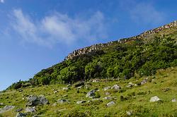 Mount Manganui