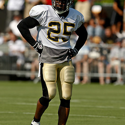 July 31, 2010; Metairie, LA, USA; New Orleans Saints running back Reggie Bush (25) during a training camp practice at the New Orleans Saints practice facility. Mandatory Credit: Derick E. Hingle