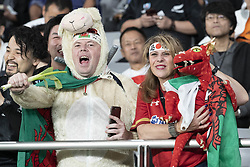 November 1, 2019, Tokyo, Japan: Fans of Wales team cheer before start the Rugby World Cup 2019 Bronze Final between New Zealand and Wales at Tokyo Stadium. New Zealand defeats Wales 40-17. (Credit Image: © Rodrigo Reyes Marin/ZUMA Wire)