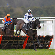 Lingfield 16th February