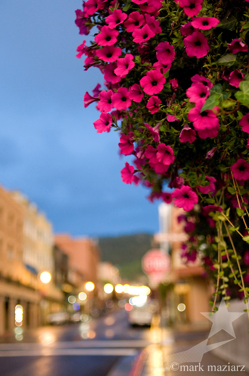 hanging flower basket on Main Street, Park City, Utah