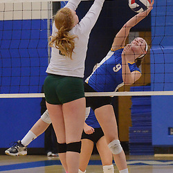 Photos by Tom Kelly IV<br /> District One semifinal volleyball game between Downingtown East and Bishop Shanahan at Norristown High School, Thursday night October 31, 2013.
