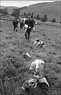 COMPETITORs WITH THEIR HOUNDS AT THE END OF A TRAIL RACE AT BENTPATH AGRICULTURAL SHOW, BENTPATH, NEAR LOCKERBIE. SATURDAY 2.9.00.©JEREMY SUTTON-HIBBERT 2000..