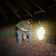 Matt McCue_Christensen Farms