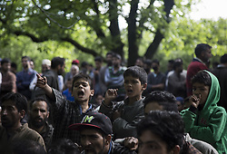 June 7, 2017 - Shopian, India - Kashmiri villager children shout pro-freedom slogans during the funeral of a teenager Adil Magray at Shopian, about 60 kilometers (38 miles) south of Srinagar, Indian-administered Kashmir, Wednesday, June 7, 2017. Magray, was shot dead on Tuesday after government forces opened fire on protesters during a search & cordon operation to flush out Kashmiri rebels in district Shopian. (Credit Image: © Ahmer Khan/NurPhoto via ZUMA Press)