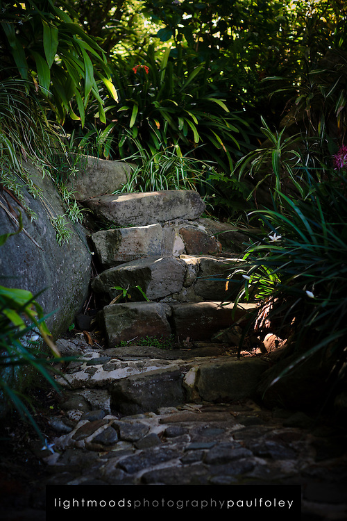 Garden Path in harbourside Mosman, Sydney,Australia