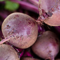 'Kestrel Hybrid' beets at a farmers market.