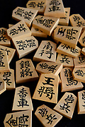 "A set of ""moriage-gama"" raised letter shogi playing pieces. Nakajima Seikichi Shoten, Tendo, Yamagata Prefecture, Japan, February 19, 2018. The city of Tendo in Yamagata Prefecture is famous for its shogi (Japanese chess) playing pieces. Production started early in the 19th century and Tendo still produces over 95% of the Shogi pieces made in Japan."
