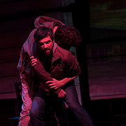 February 10, 2016 - New York, NY : Michael Cumpsty, rear left, and Michael Crane, foreground right, perform in a dress rehearsal for the Primary Stages production of Dan O'Brien's 'The Body of an American' at the Cherry Lane Theatre in Manhattan on Wednesday afternoon.  CREDIT: Karsten Moran for The New York Times