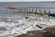 Wooden groyne, Coastal defences, Lowestoft, Suffolk, England