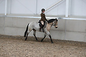 20 - Class 19 - Riding Horse