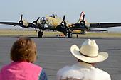 WWII Warbirds