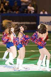 14 March 2009: Extreme Dancers perform between the quarters. The Sioux Falls Storm were hosted by the Bloomington Extreme in the US Cellular Coliseum in downtown Bloomington Illinois.
