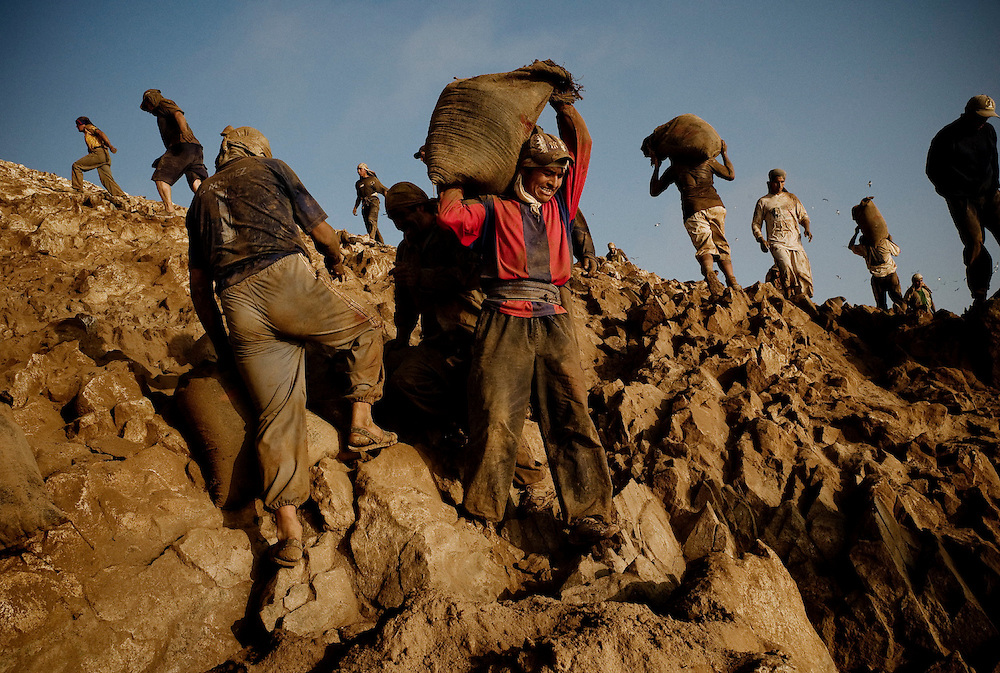 Workers carrying sacks of guano in Guañape Norte Island in the coast off Peru, April 2009. The daily task for porters is to carry around 125 sacks of 50kg an average distance of 50mt per worker, so each porter carries 6.25 tons a day.