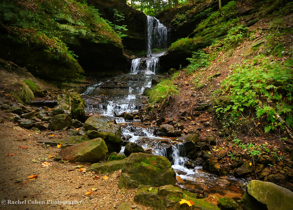 &quot;Horseshoe Falls&quot;<br /> <br /> Lovely Horseshoe Falls surrounded by wonderful woodlands on a wet and rainy day!!<br /> <br /> Waterfalls by Rachel Cohen