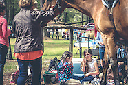 2016 Show in the Woods