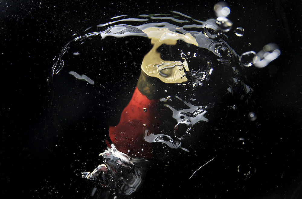 Shot gun shell falling into water