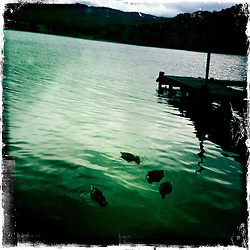 Loch Lomond..Hipstamatic images taken on an Apple iPhone..©Michael Schofield.