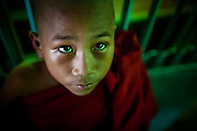 A novice monk in portrait.