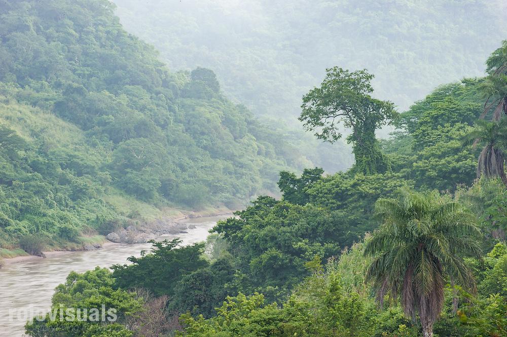 Selva baja en las orillas del río San Pedro Mezquital en su paso por las fértiles tierras de El Venado, Nayarit.