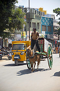 KADIRI, INDIA - 03rd November 2019 - Man riding horse and cart through Kadiri town centre, Andhra Pradesh, South India