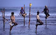 Stlit fisherman of Weligama at sunset, Weligama, Sri Lanka