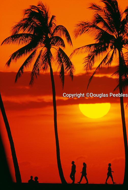 Sunset, Ala Moana Park, Waiki, Honolulu, Oahu, Hawaii
