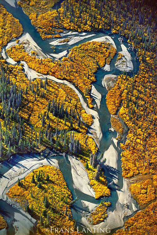 River channels (aerial), Wrangell St. Elias National Park, Alaska