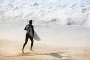Male Surfer at the Beach