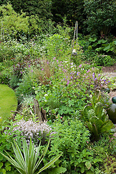 General view of early June borders in small town garden