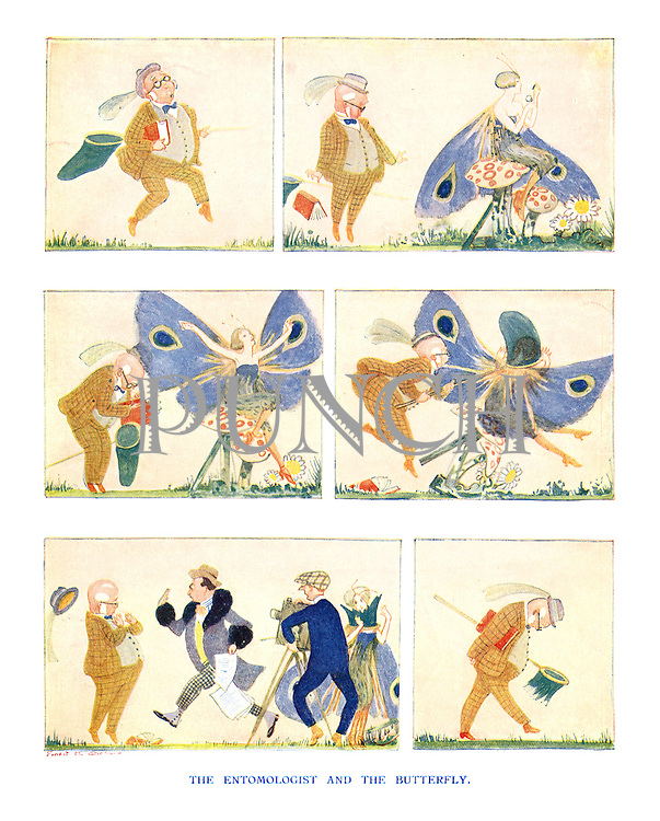 The Entomologist and the Butterfly.