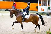 Annemiek Vreeswijk - Hedwich Fuga<br /> KNHS Indoorkampioenschappen 2020<br /> © DigiShots